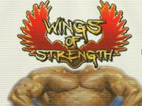 Chicago Wings of Strength - Vorschau